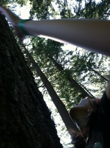 2013 Portland Tree Climbing Competitions Are Coming!
